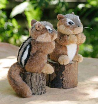 Stuffed Animal House - Chipmunk #ch01